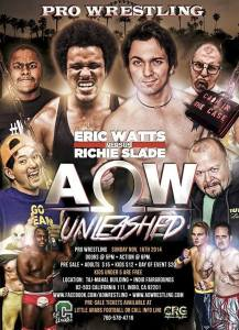 AOW 11-16-14 flyer