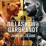 UFC_227_Poster