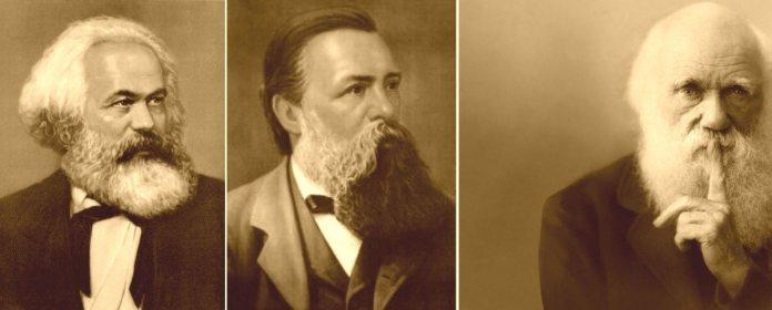 Marx, Engels og Darwin
