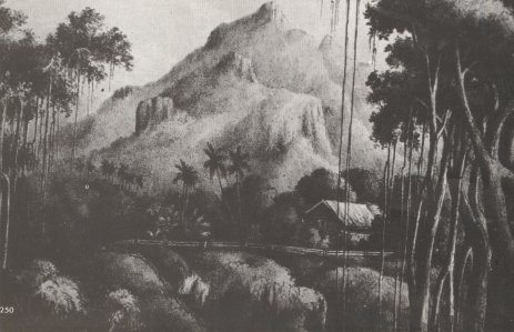 House of Fletcher Christian, leader of mutiny on Bounty, Pitcairn Island. Date: 19th century Source: http://www.janesoceania.com/captbligh/index.htm Public Domain.