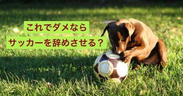 小学校3年生-これでだめならサッカーを辞めさせる。を辞めさせた!!