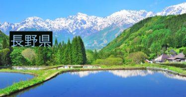 長野県の個人レッスン実績