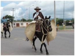 Gauchos et chevaux en habit d'appparat à La Viña
