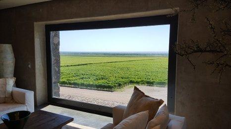Magnifique vue depuis les bodégas argentines.
