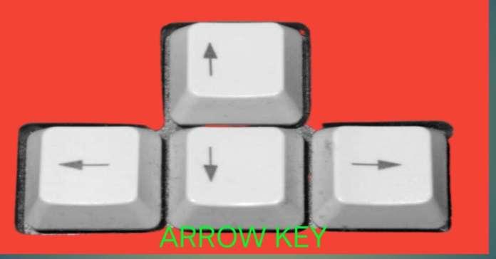 Arrow key A device of computer network