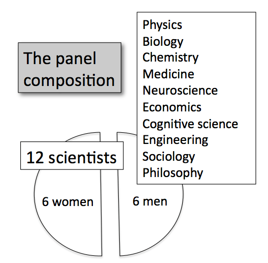 Panel_Composition