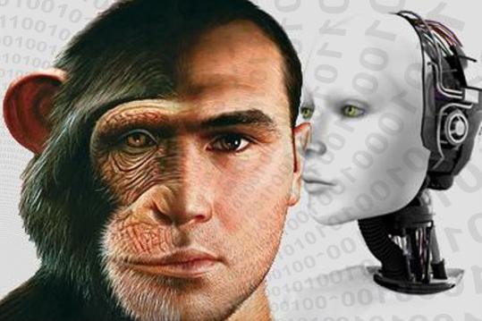 human_morph