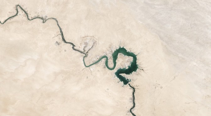 Satellite image of a delta - a metaphor for information flowing in a social lab