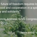 """Building a future of freedom requires love of the common good and cooperation in a spirit of subsidiarity and solidarity."" Pope Francis, Address to US Congress, 24 September 2015"