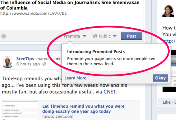 Facebook Introduces Promote Feature for Users