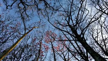 PicsArt_03-16-05.29.35