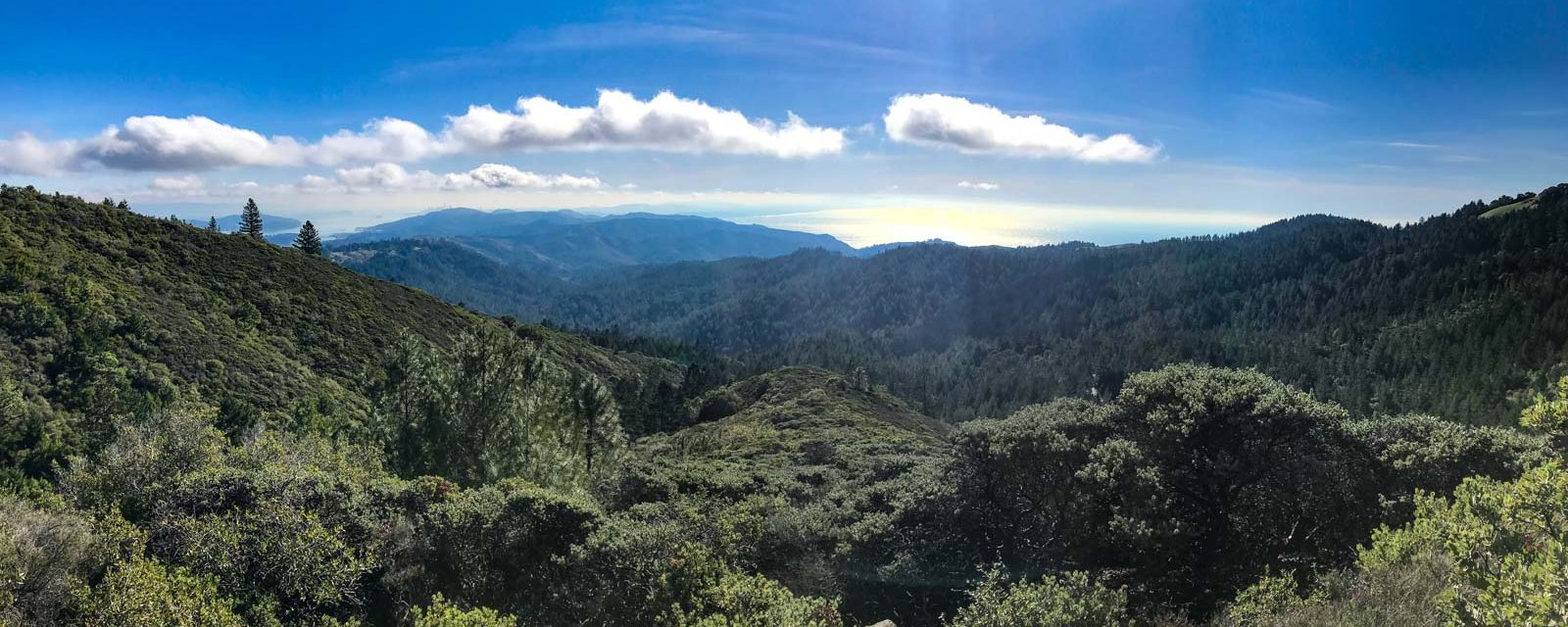 Group Hike: Stinson Beach to Mount Tamalpais
