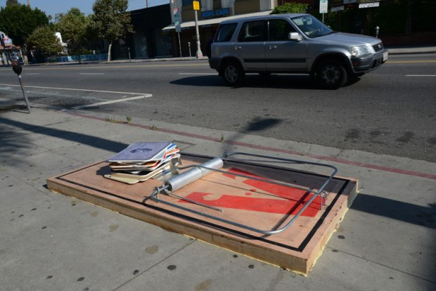Currently residing in Los Angeles, many know him as the artist who built a tiny wall around Trump's star on the Hollywood walk of fame.
