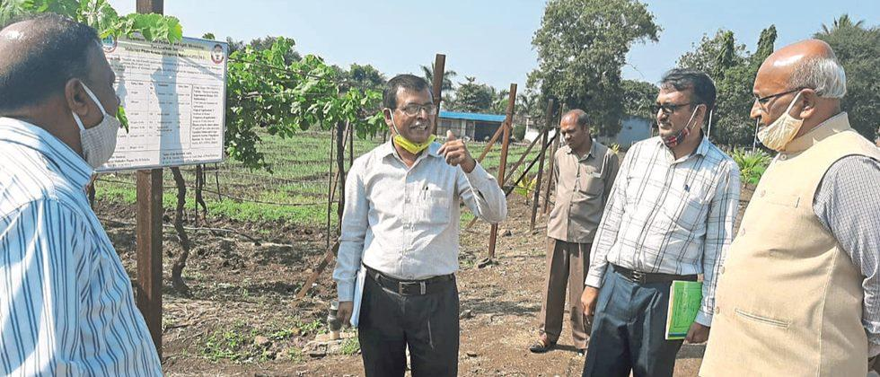 Use Agricultural University Technology: Dr. ढवण