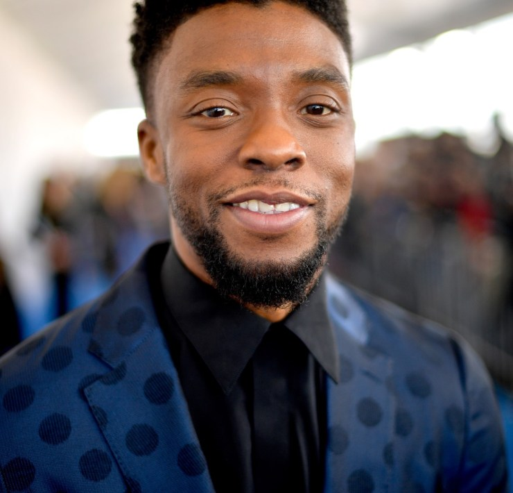 Chadwick Boseman 2018 Film Independent Spirit Awards - Red Carpet