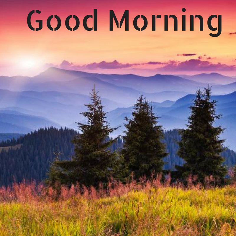 Nature Images With Quotes Download: Good Morning HD, Wallpapers, Whatsapp Images, Quotes, And