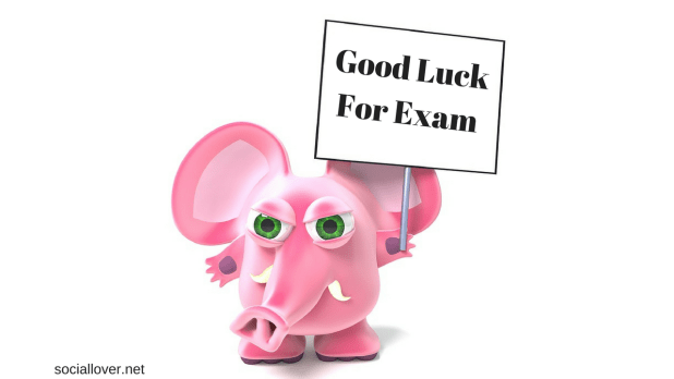 good luck pictures for exam results