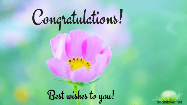 congratulations images with flowers