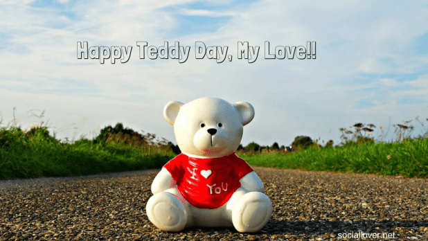 Happy teddy bear day images and pictures