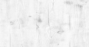 light wood background texture