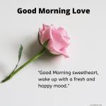 Heartfelt Good Morning Love Messages For Girlfriend Boyfriend For Whatsapp