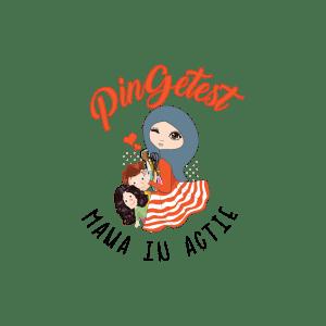 PinGetest-Logo-transparant-e1582834727340-2