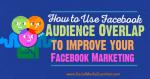 av-facebook-audience-overlap-560