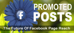 Promoted Posts: The Future Of Facebook Page Reach