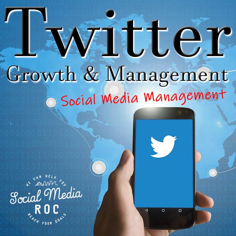 Twitter growth - Social Media Management