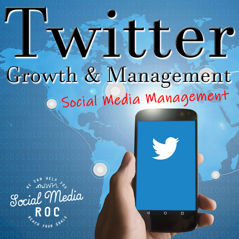 Twitter growth - Social Media Management