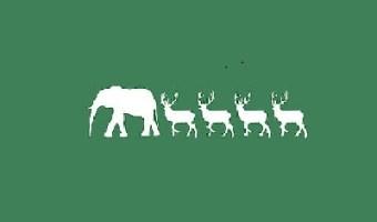 white elephant party gift ideas
