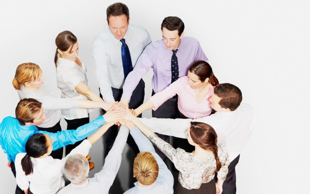 The Best Employee Team Building Strategies for Your Business