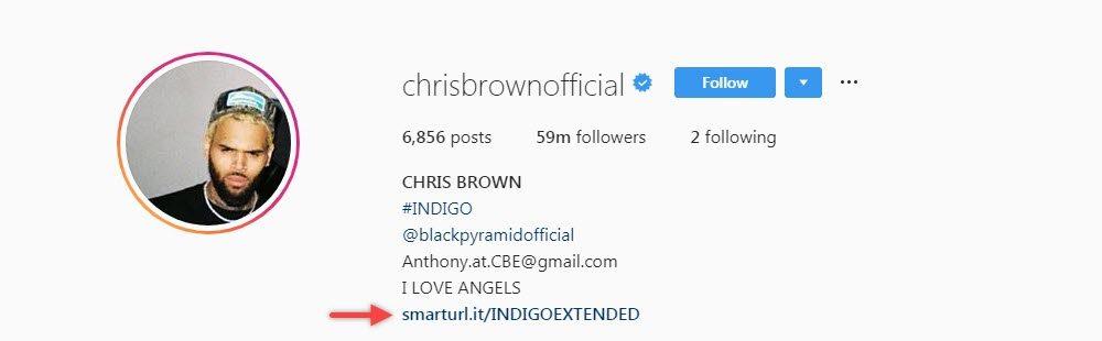 Chris Brown utilise SmartURL pour les bioliens