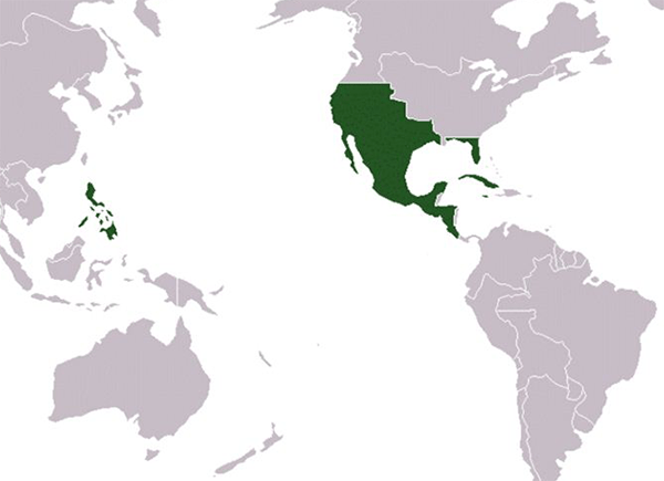 The Campaign for Mexican Independence