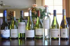 Wines-of-Chile-Coastal-Whites1