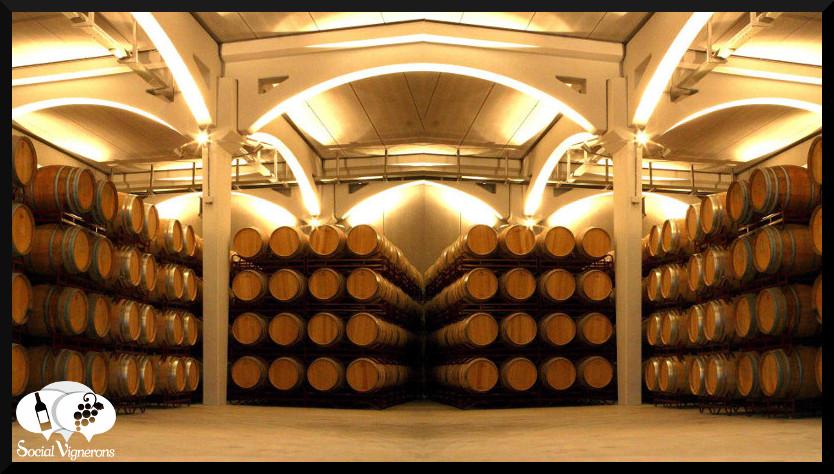 Barrel Room in Utiel Requena wine region - Vinas 2