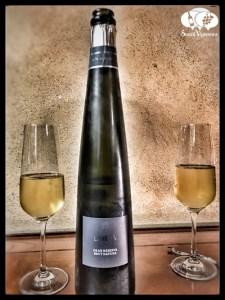 Alta Alella Leia Cava Sparkling wine long bottle flute glass portrait social vignerons small