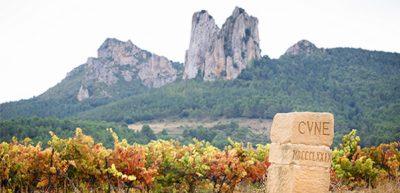 CVNE Compania Vinicola del Norte de Espana vineyards of Contino rioja region Social Vignerons