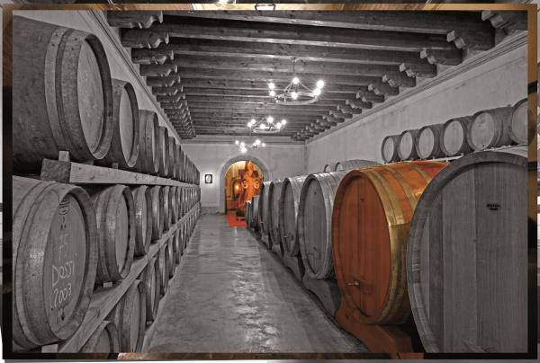 tenuta-la-montina-franciacorta-winery-italy-piedmont-barrel-room-oak-vats-botti