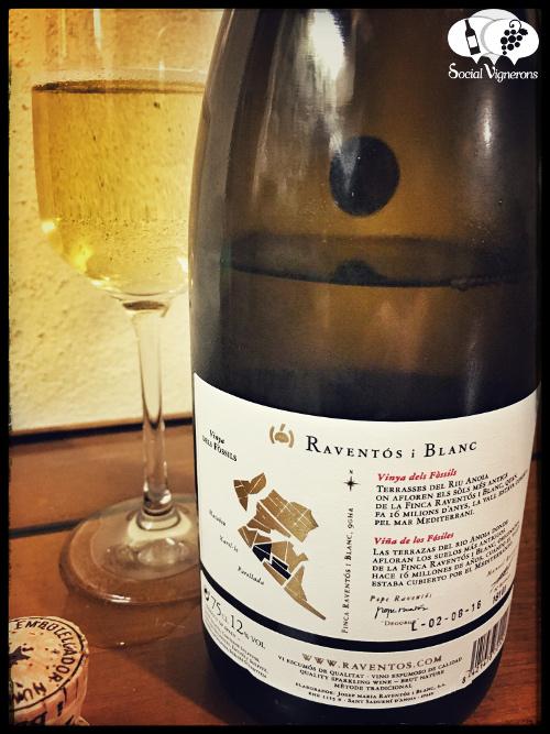 2013-raventos-i-blanc-de-la-finca-sparkling-vinya-dels-fossils-wine-from-catalonia-back-label-review-social-vignerons