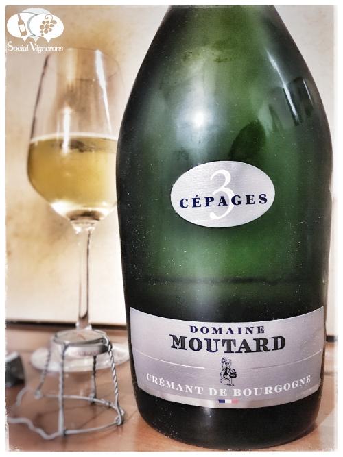 moutard-cremant-de-bourgogne-3-cepages-brut-sparkling-wine-from-burgundy-review-front-label