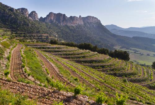 2017 Domaine Brusset 'Tradition Le Grand Montmirail' Gigondas Red Wine, Rhône