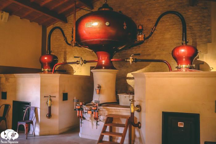 Visiting & Tasting Château Montifaud, Family Cognac Maker since 1866
