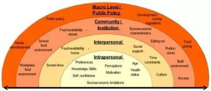 E Factor Diet Foods