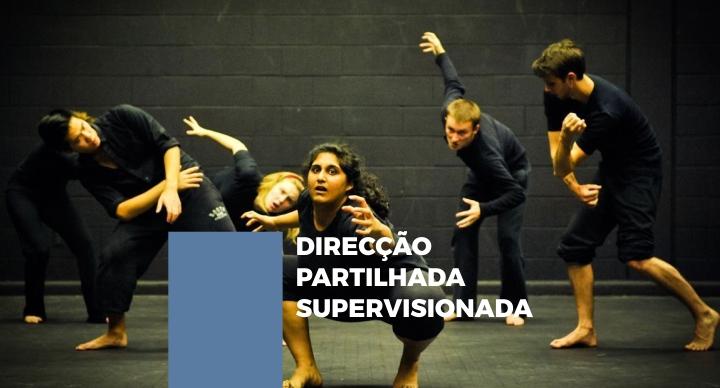 DIRECÇÃO PARTILHADA SUPERVISIONADA