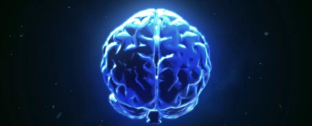https://i0.wp.com/socientifica.com.br/wp-content/uploads/2018/10/mind-scan-me_1024.jpg?resize=1024%2C415&ssl=1
