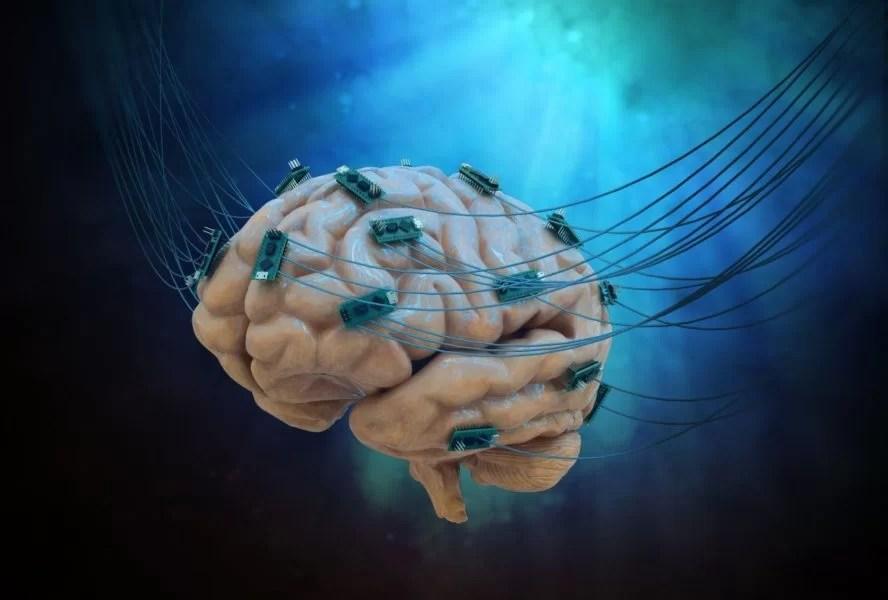 https://i0.wp.com/socientifica.com.br/wp-content/uploads/2019/07/neuralink-3.jpg?fit=1200%2C811&ssl=1