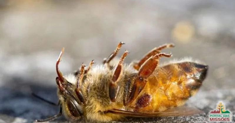 As abelhas estão caindo mortas em todo o Brasil, e a razão é absolutamente devastadora
