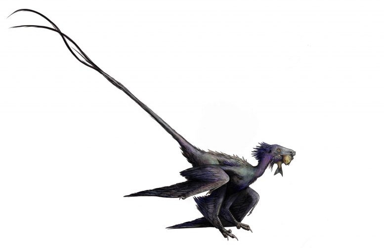 Renderização do artista Wulong, o dinossauro emplumado que foi descoberto recentemente. (Crédito: Ashley Poust)
