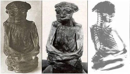 A misteriosa Múmia das Montanhas de São Pedro